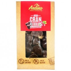 CHOCOCHIPS ANDINO CRANBERRIES - 30 GR