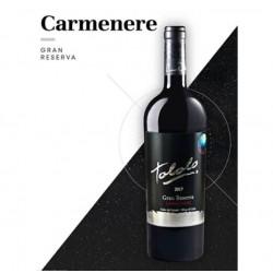 VINO TOLOLO GRAN RESERVA CARMENERE 750 CC