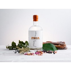 GIN PROA - HANDCRAFTED CHILEAN - 750ML